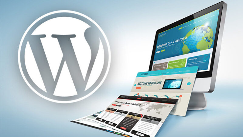 WordPress celebrates its 18th birthday and has built more than 40% of global websites